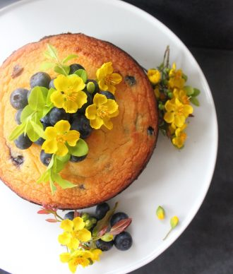 Blueberry & Lemon Coconut Cake