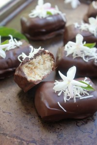 Gluten-Free Chocolate Bounty Bars